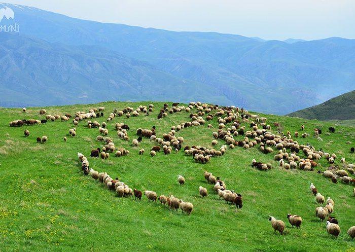 Puteshestvie po Armenii